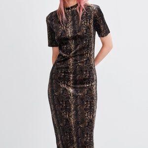 Zara velvet dress *NWT*